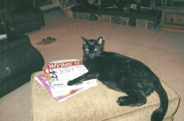 Mackie+Magazines+Photo
