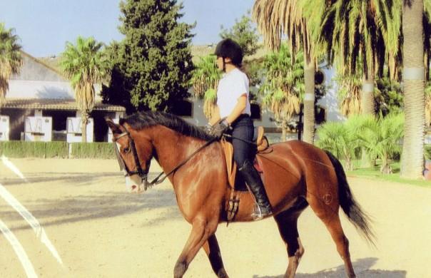 Student rider at equestrian in Jerez De La Frontera, western Spain