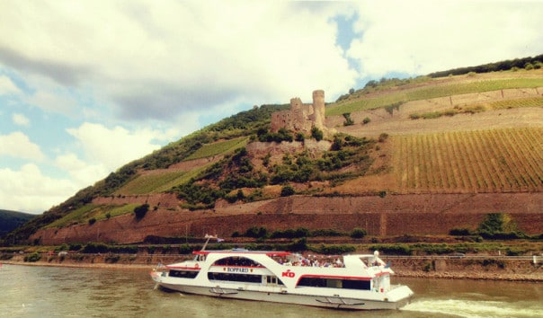 Cruise in the Rhine River Valley
