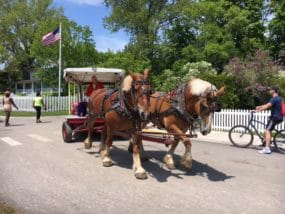 Horse-drawn carriage rides.