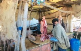 Meat sold was usually restricted to goat, sheep and turkey.