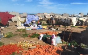 Carrots, tomatoes and onions were among the fresh vegetables sold.