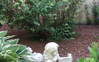 Favourite Garden Sanctuary